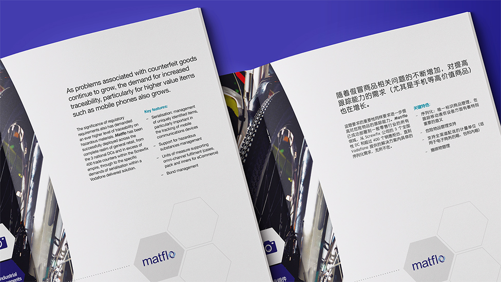 Brochure design and translation