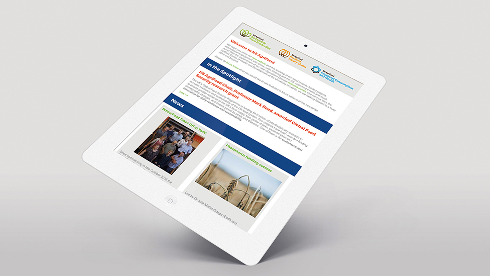 digital newsletter design