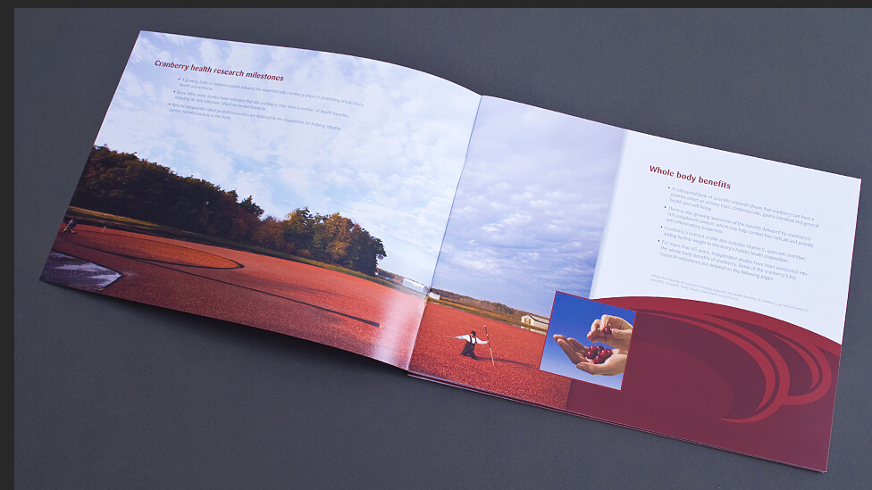 food industry report design