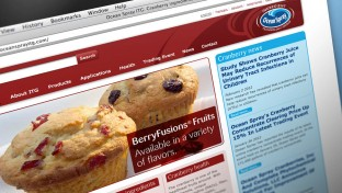 Ocean Spray Web Site Design