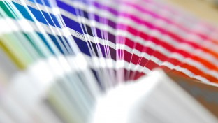 What is a Pantone?